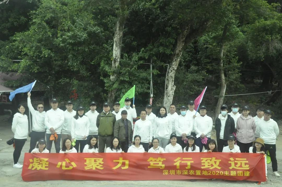 【活动回顾】深农集团杨梅坑徒步拓展之旅圆满结束!